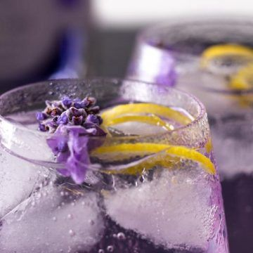 Discover the world of colour changing gins