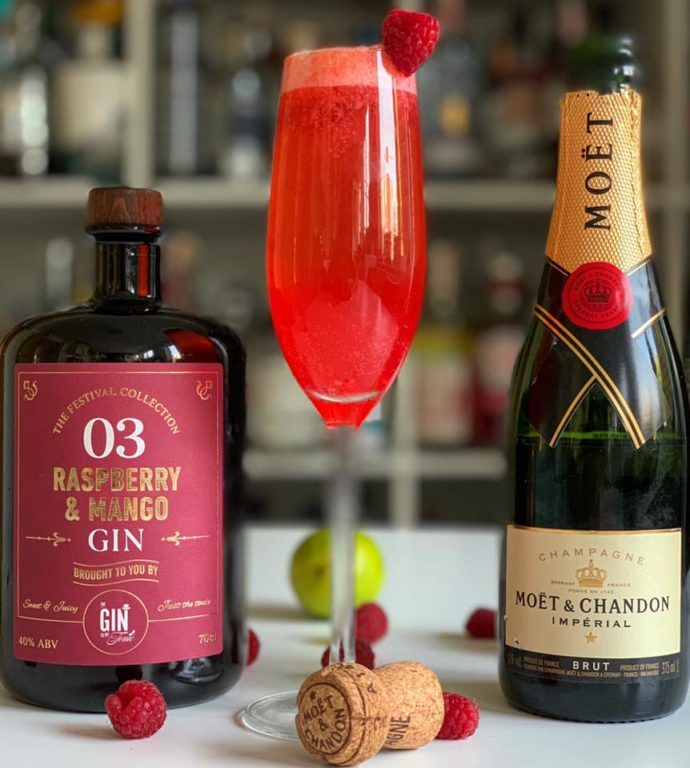 The Gin To My Tonic Raspberry & Mango Gin Fizz