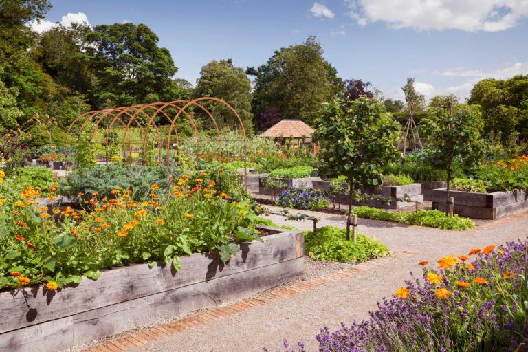 Slingsby Rudding Botanicals
